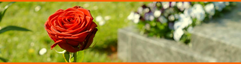 Trauerbegleitung der Angehörigen